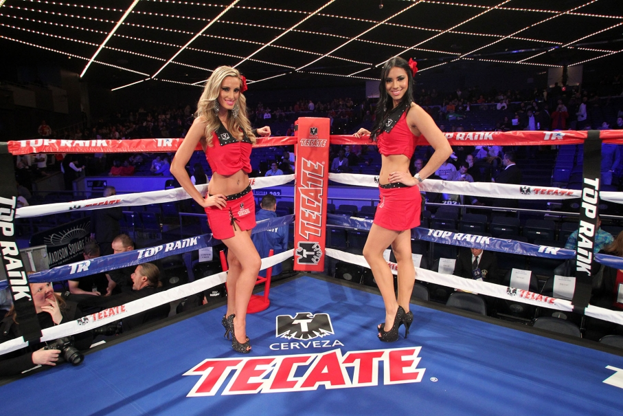 chicas tecate ring girls proboxing fans com pacquiao loses pacquiao loses to horn