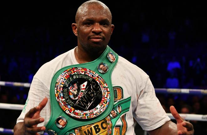 Whyte is hoping for a world title shot by the end of the year. Credit: Sporting News