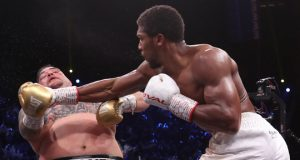 Joshua produced a dominant display to see of Ruiz Jr to win the rematch Credit: Matchroom Boxing