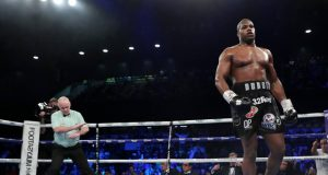 Daniel Dubois eased to a second round knockout of Kyotaro Fujimoto Credit: Getty Images