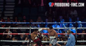 Navarrete put on a dominant display against Santisima at the MGM Grand in February Credit: Pro Boxing Fans