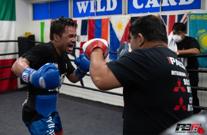 Pacquiao has been training back at the Wild Card Gym Photo Credit: Pro Boxing Fans
